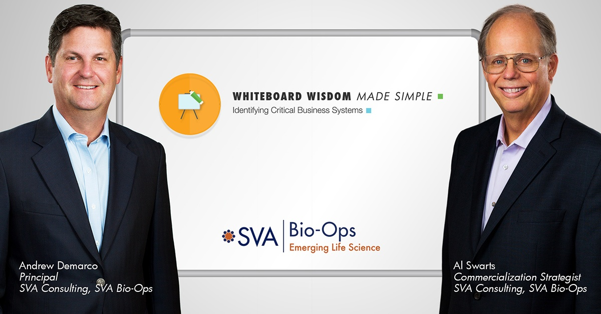 Whiteboard Wisdom Made Simple: Identifying Critical Business Systems